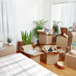 Home Filled with Packing Boxes | 3GuysMoving.com