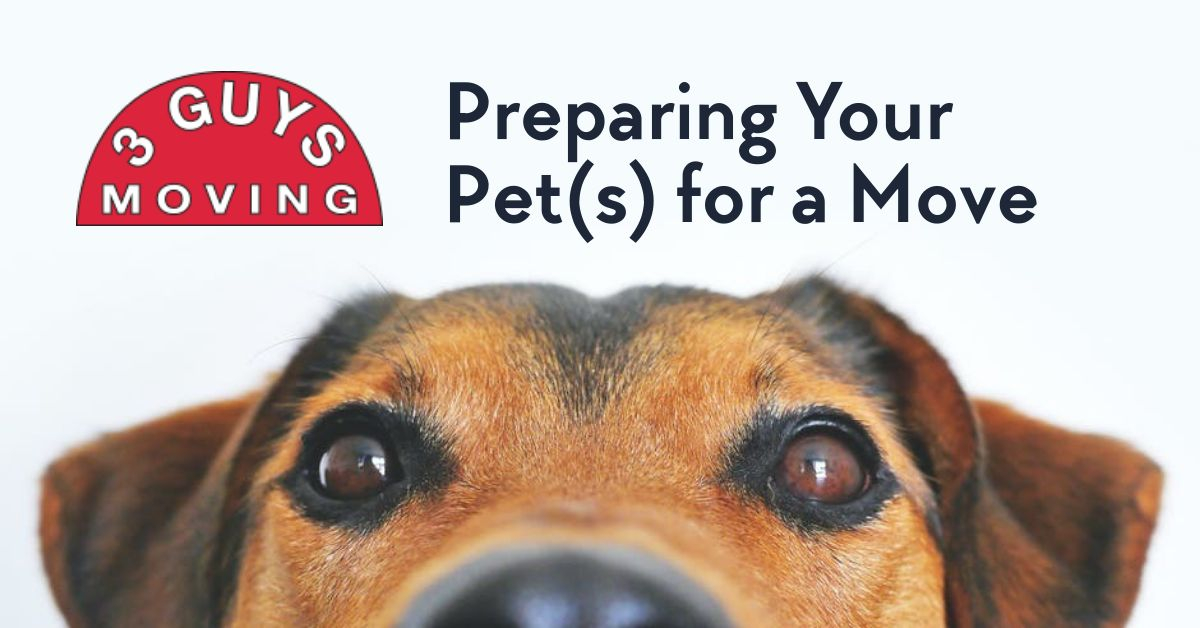 Preparing Your Pet - Preparing Your Pet(s) for a Move